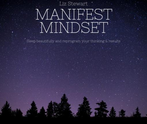 Manifest Mindset audio cover art Liz Stewart
